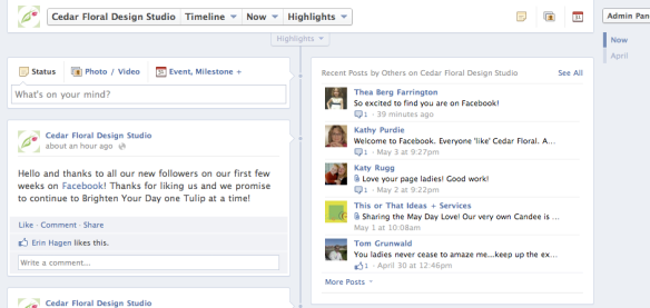 Facebook Live Comments