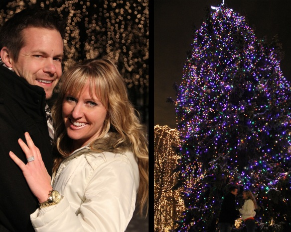 Rice Park Proposal moment by Trina