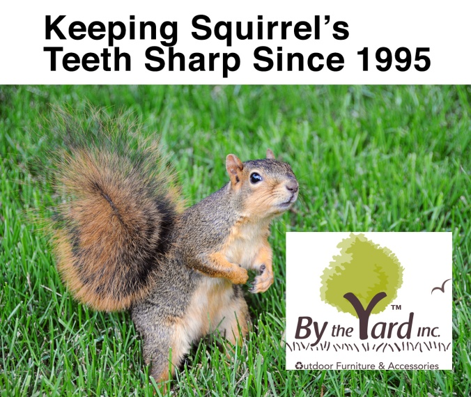 squirrel-by-the-yard-tables-chairs