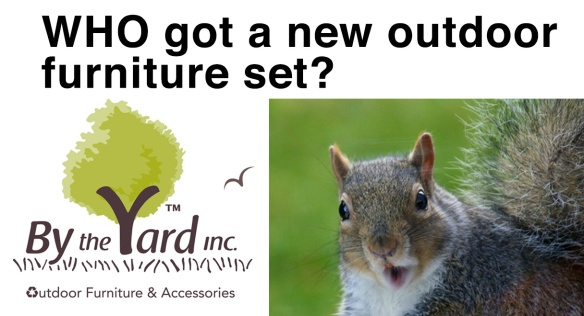 squirrels-eat-furniture-by-the-yard-table-chairs